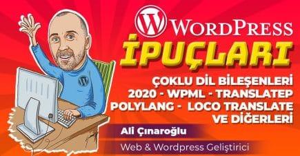 WordPress Çoklu Dil Bileşenleri – 2020 – WPML – TranslateP. – Polylang – Loco Translate ve Diğerleri